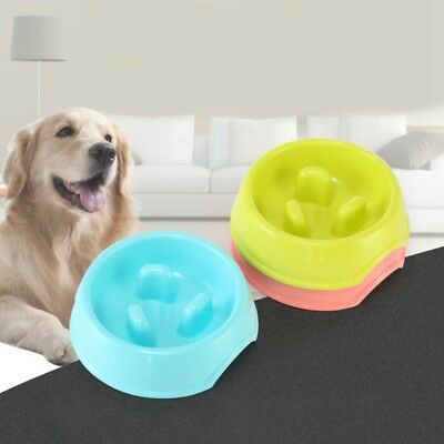 Slow Feed Feeders Dog Bowl Slowly Bowly By Fun Interactive Dish For Fast Eaters
