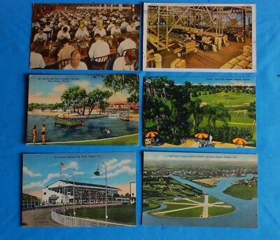 Lot of 14 Vtg Tampa / Lake Wales Florida Postcards - Cigar Co / Golf / Dog Track