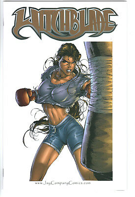 Witchblade: Cover Gallery Jay Co. Exclusive Issure 1B - Near Mint