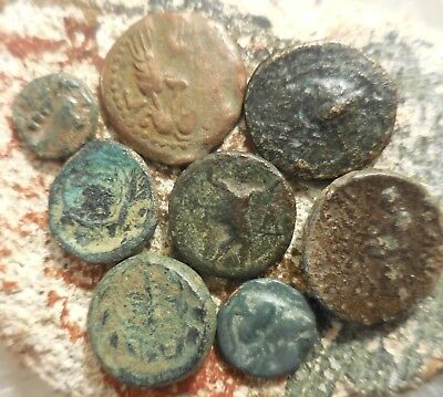 Lot of 8 Fine to VF Ancient Greek Coins, Including Judea Agrippa! Largest 18 mm