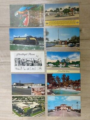 Lot of 30 Florida Vintage Postcards