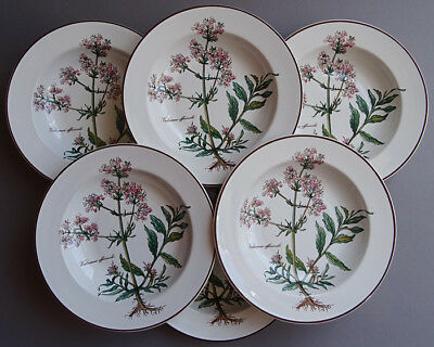 Villeroy & Boch Botanica 6 Rimmed Soup Plates - Old Style (With Roots)