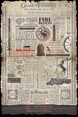 Game of Thrones Poster Infographic 61 x 91,5 cm