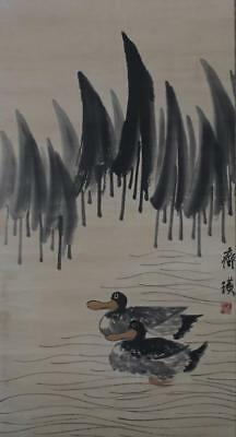 Chinese Old Qi Baishi Scroll Painting Duck 63""