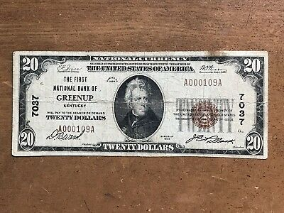 The First National Bank of Greenup KY 1929 $20 National Currency Type 1