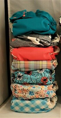 SmartBottoms 3.1 / AIO / Organic OS / Cloth Diaper Lot / EUC