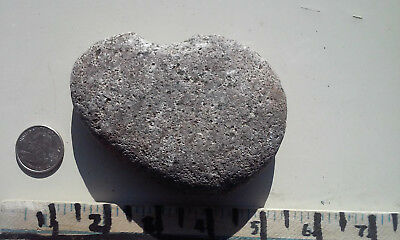 3 1/2Inch Natural Near Perfect Heart Shaped Rock Fossil Inclusion! From CO+XTRAS