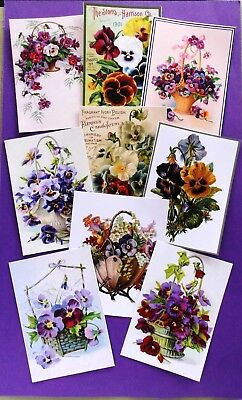 Printed Assorted Pansies Card Toppers X 9 Vintage Antique All Occasion