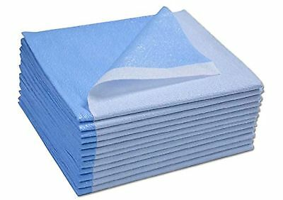 Avalon Papers 357 Stretcher Sheet, Tissue/Poly, 40'' x 72'', Blue (Pack of 50)