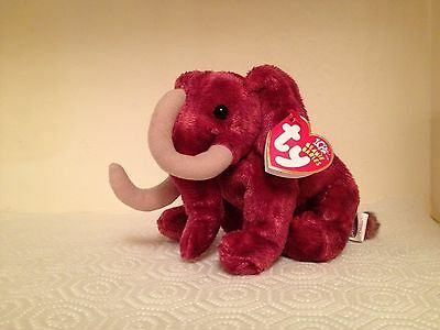 """Retired *Colosso* Ty Beanie Baby ~6"""" Mammoth~ Super Cute !!  MWMT!  WOW!!"""