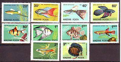 HUNGARY - 1962. Ornamental Fish - MNH