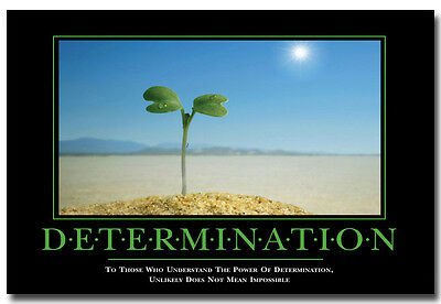 "DETERMINATION -Buds Grow Motivational Art Silk Fabric Poster 13x20"" 24x36"" 072"