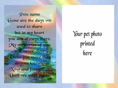Personalised Framed pet memorial photo with verse, Rainbow Bridge Cats, Dogs