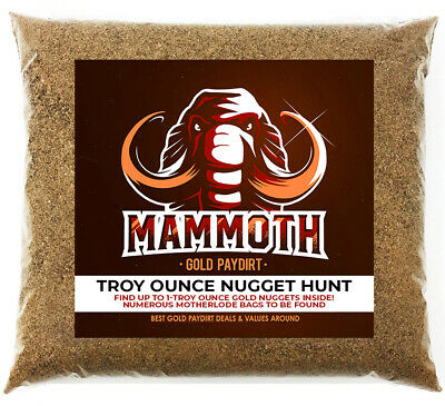 MAMMOTH STAKES - Gold Paydirt Concentrate - Chase For The Multi-Gram Nugget
