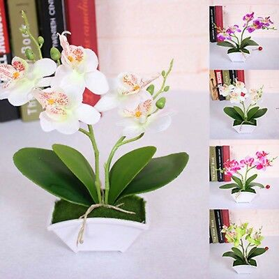 Artificial Butterfly Orchid Flower Plants in Pot Fake Home Decor Wedding Party ^