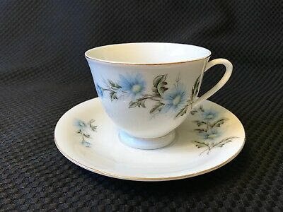 Beautiful Blue Daisy Cup and Saucer set made in China
