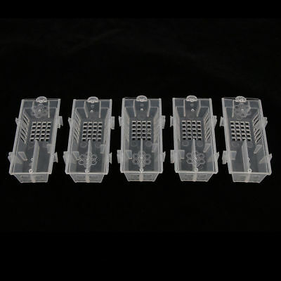 5Pcs Professional Queen Bee Butler Cage Catcher Trap Case Beekeeping Tool DH