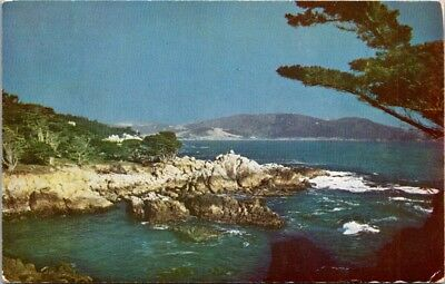 Postcard 1966 California CA Monterey Pacific Grove Carmel Bay Cypress Point E-50