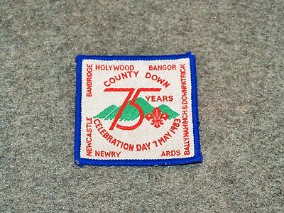 World Scouting Patch…county Downs Scouts…northern Ireland…75Th Anniversary…1983