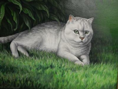 vintage oil old painting of a cat CAT signed SARAH C MILLWARD