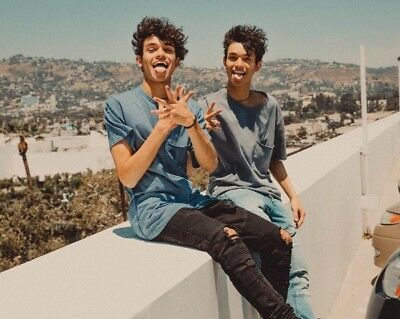 79ad29e751a Lucas   Marcus Dobre Twins Youtube Vlogger 10x8 Inch Poster Picture Print