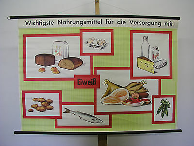 Schulwandkarte Food Supply Protein 115x81cm Vintage School Map~1965