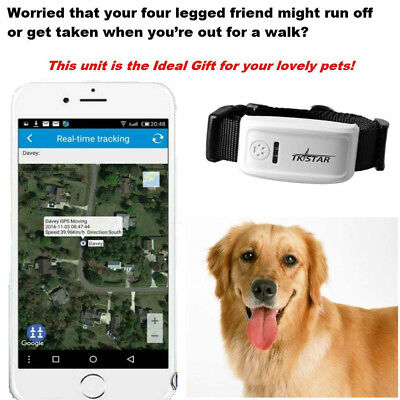 Global Locator Real Time Pet GPS Tracker For Pet Dog/Cat GPS Collar Tracking Kit