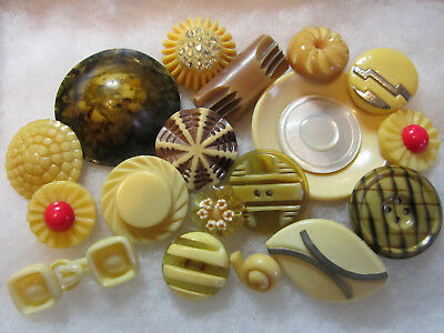 Great Lot Of Vintage Cream / Beige Celluloid Buttons