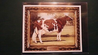 "1995 BONNIE MOHR TRUE TYPE MODEL RED & WHITE HOLSTEIN COW 8""x10"" LITHOGRAPH"