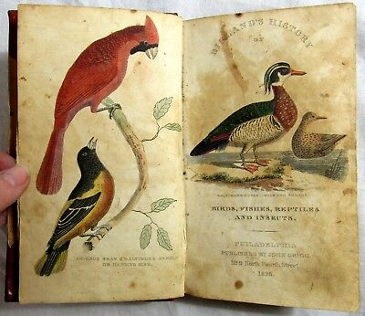 1828 BIGLAND'S NATURAL HISTORY of Birds Fishes Reptiles HAND COLORED PLATES Rare