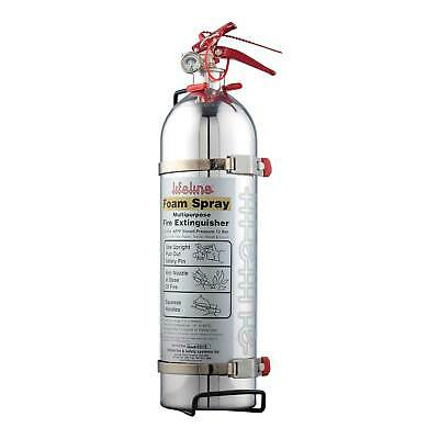 Lifeline MSA Approved Polished Hand Held Race / Rally Fire Extinguisher - 1.75L