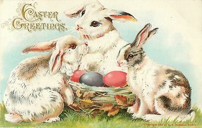 Trio of White Bunny Rabbits & Eggs~Antique Embossed Easter Postcard-a351
