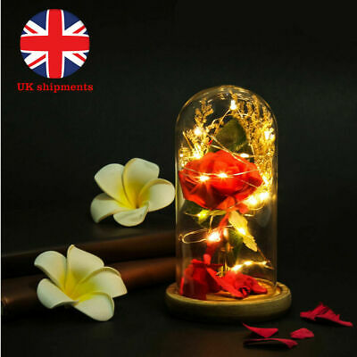 Enchanted Rose Beauty And The Beast Preserved Flower In Glass
