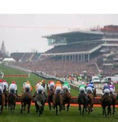2 Tickets For Cheltenham Festival Trials Day 26-01-2019 Club/tatts Rrp £50