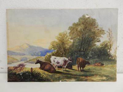 really old PAINTING water colour cattle landscape