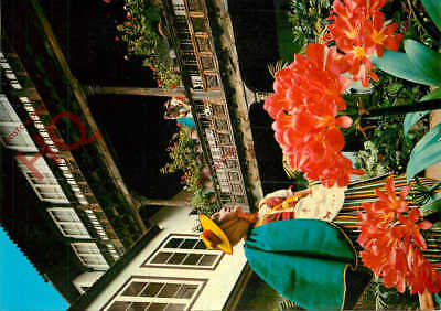 Postcard-:Tenerife, La Orotava, Typical Costumes In The 'Casa De Los Balcones'