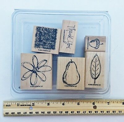 Stampin Up! ALL NATURAL wood stamp set - flower, acorn, Thank You