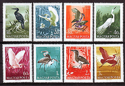 HUNGARY - 1959. Birds - MNH