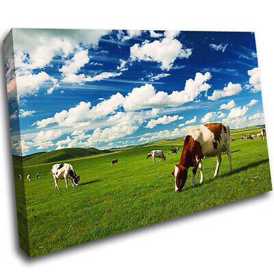 Cows Cattle Meadow Clouds Sky Canvas Poster Art Print Wall Art Picture AE651