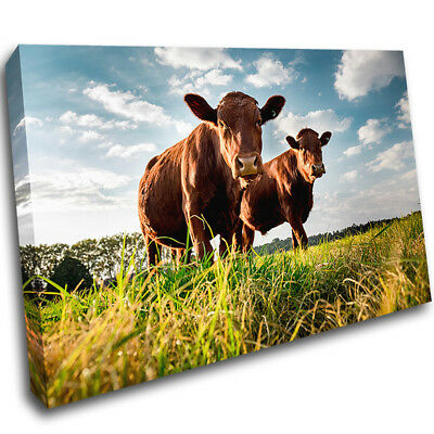 Cows Cattle Meadow Clouds Sky Canvas Poster Print Wall Deco Picture AE652