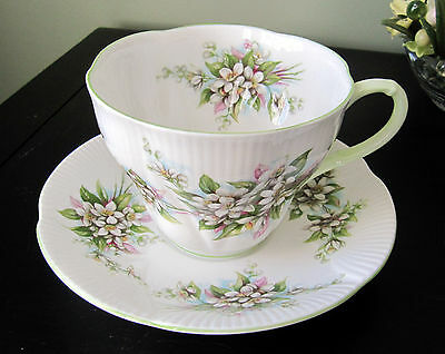 Royal Albert Cup and Saucer-  Blossom Time Series, Orange Blossom