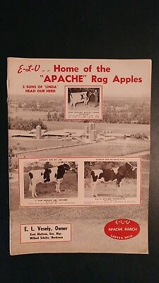 1971 E-L-V Apache Ranch Holstein Herd Directory Book - Lapeer Michigan El Vesely
