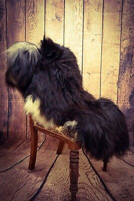 Black and White Icelandic Long Haired Sheepskin Rug - XXXL 135cms by 80cms