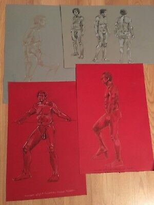 Warren Lamm Signed Life Drawings Sketch From Live Male Nude 4 Page Series