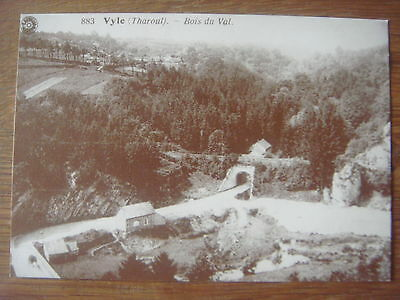 VYLE ( THAROUL ) - Bois du Val -( Marchin ) ----------------- Reproduction ADEPS