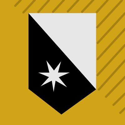 Destiny 2 Peace of the City Emblem code PS4/Xbox One/PC *Fast Delivery*