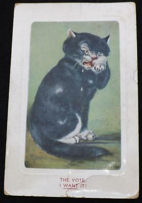 """Old Postcard Of A Comical Cat """"The Vote I Want It! - Suffragette Related"""