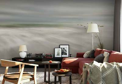 Sand Beach Plant Milky Water Lowtide Photo Wallpaper Wall Mural (1X-601867)