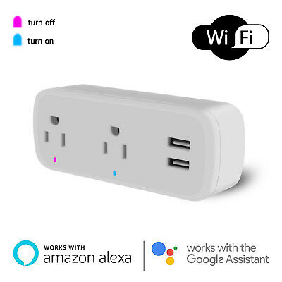 Wifi Smart Socket Dual Outlet 2 USB Port Plug Power Strip With Alexa Google Home
