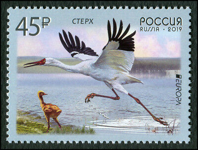 """Russia 2019 """"Europe"""" program issues. Birds Stamp Mint Never Hinged MNH"""